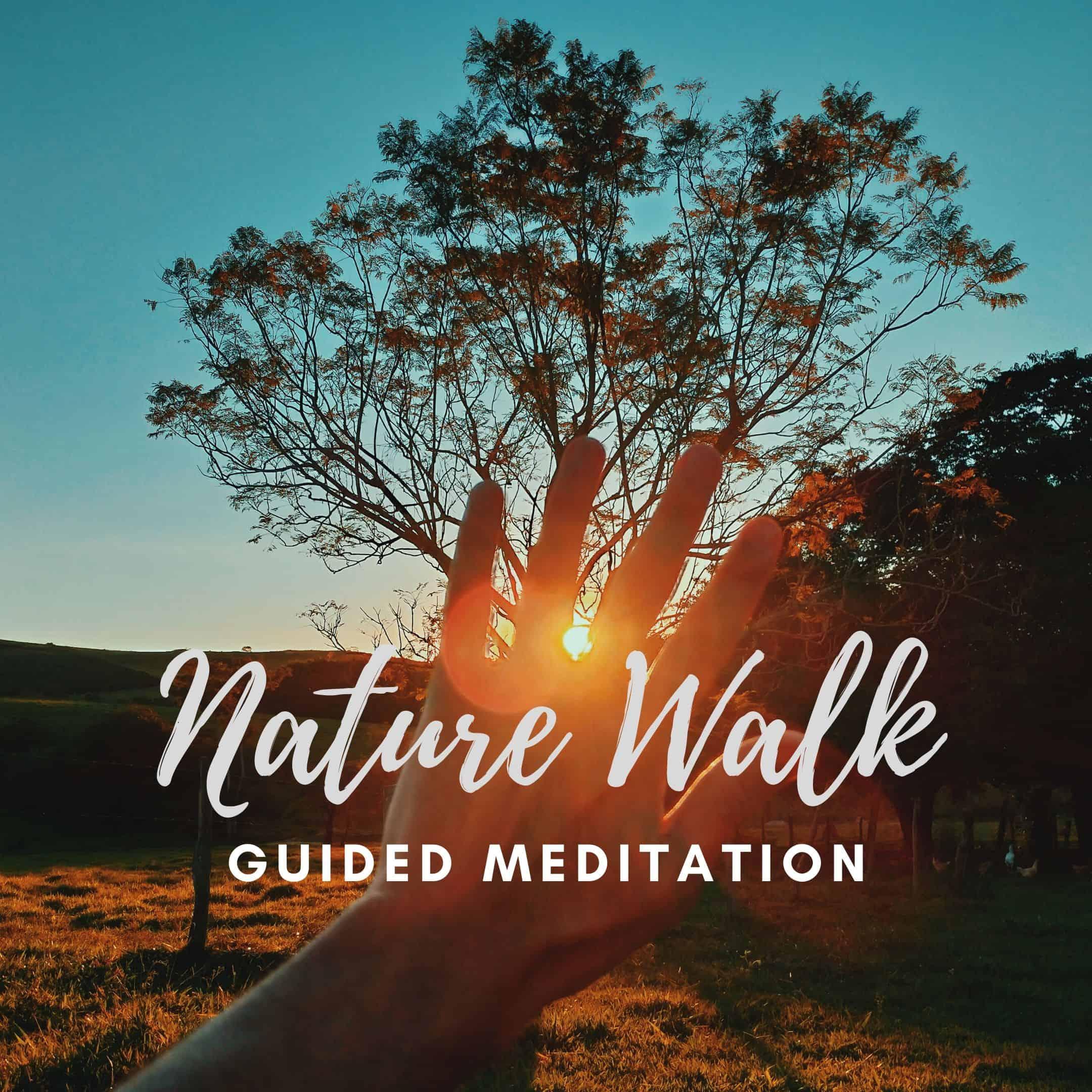 Nature walk meditation (1)