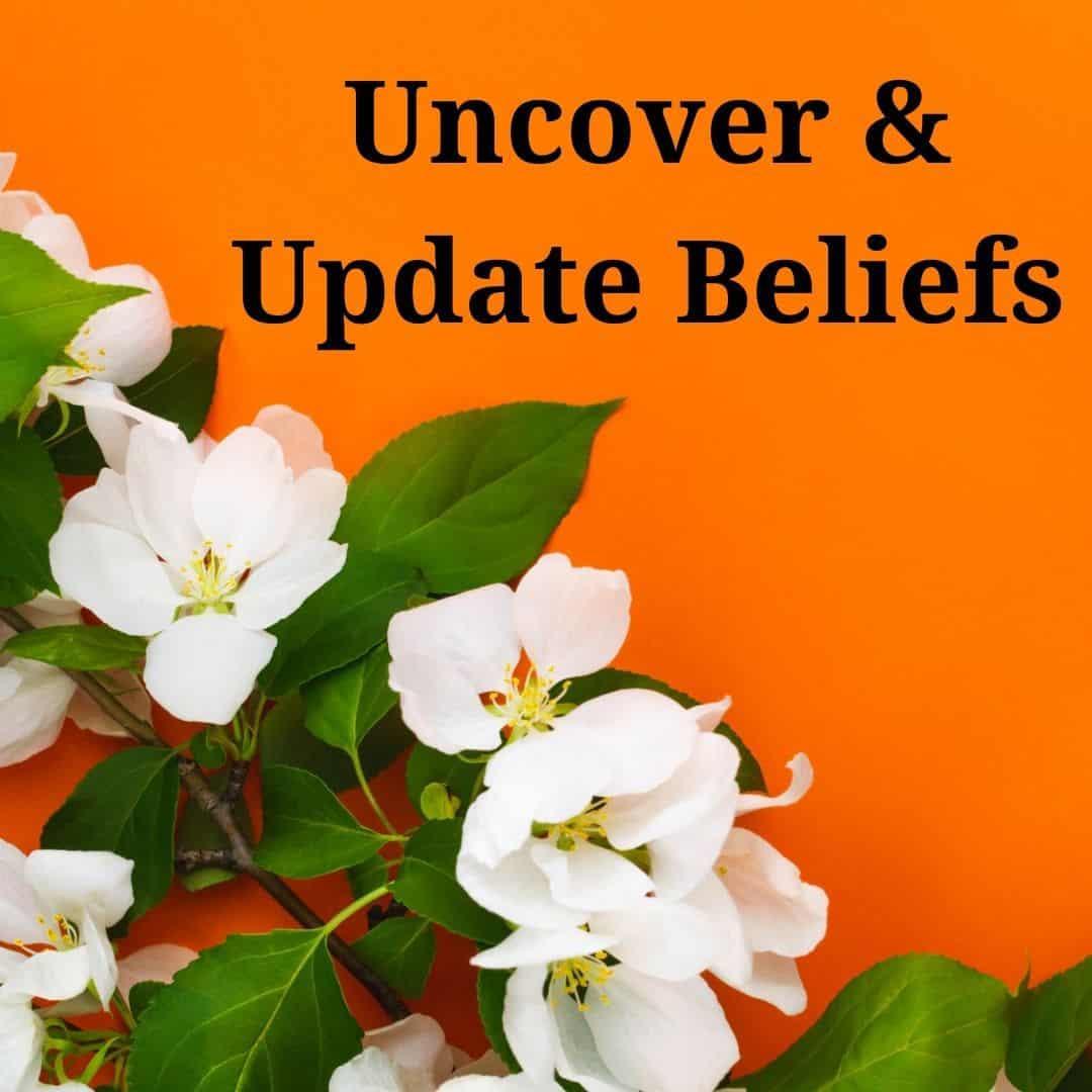 3. uncover update beliefs